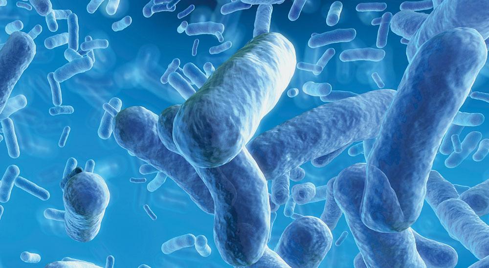 ISO 22196對塑料和其他無孔表面的抗菌活性的測量